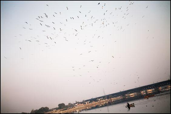 Yamuna River - Old Delhi